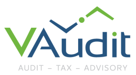 Auditoría y Consultoría para tu empresa  | VAudit.es Profesionales para tu empresa